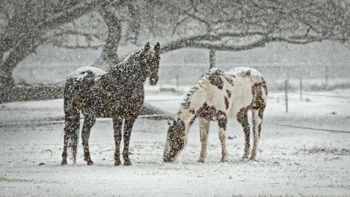 На Киров надвигается вторая «снежная волна»