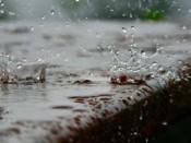 В Кирове снова дожди
