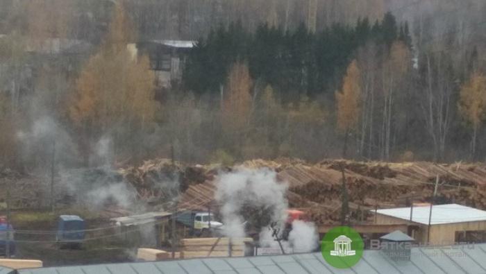 На кировской пилораме сжигают трупы животных