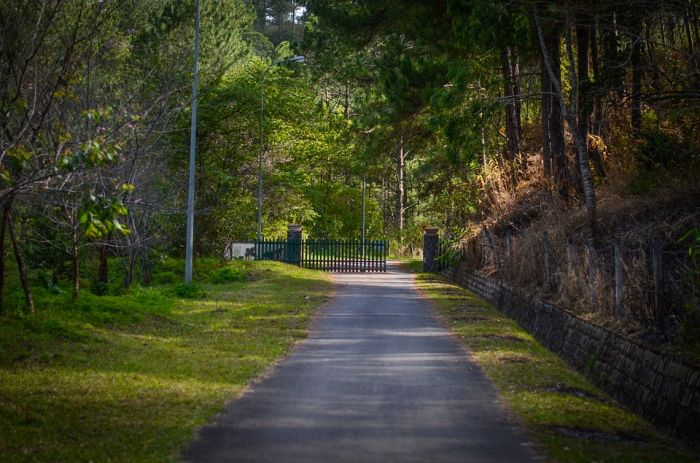 В следующем году к участкам для многодетных семей планируют благоустроить дороги