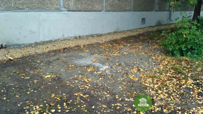 ОНФ: На улице Попова во время капремонта дома забетонировали газон