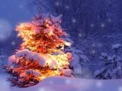 Ёлочка, гори! Дед Мороз зажжет огни на главной Ёлке Кирова