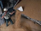 60 миллионов рублей для сельскохозяйственных товаропроизводителей региона