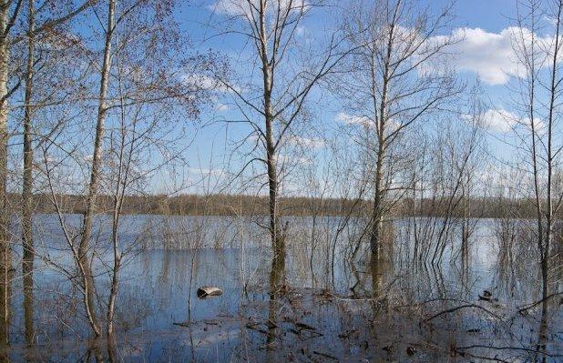Вода в Вятке поднялась на 32 см