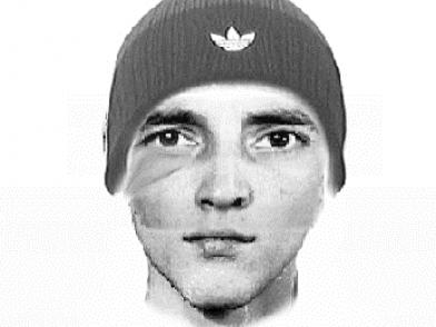 Полиция разыскивает подозреваемого в разбое с применением оружия (видео)