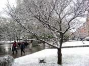 И снова в Кирове снег