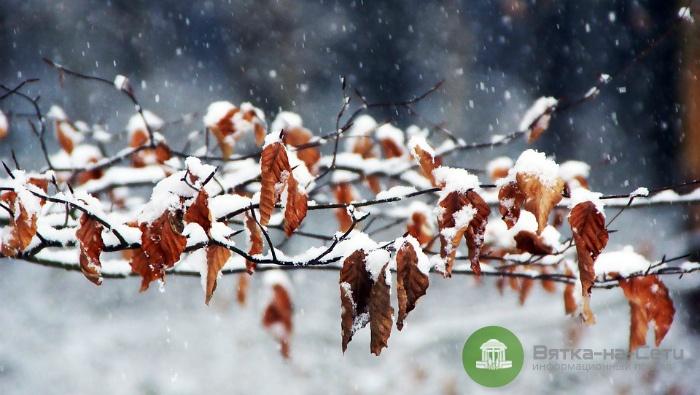 Погода 11 ноября