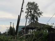 16 районов области пострадали из-за вчерашнего урагана