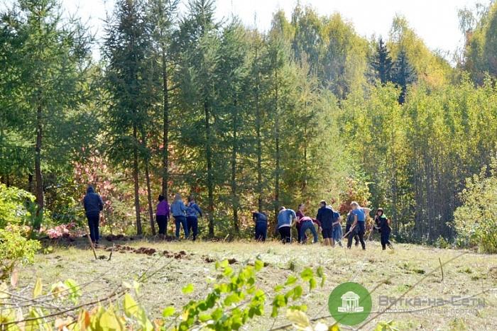В кировском Дендропарке создадут питомник коллекционных растений