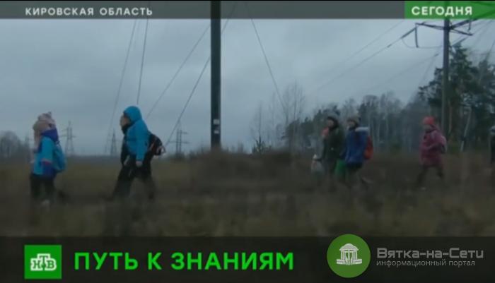 Посёлку, где дети ходят 6 километров до школы через лес, дадут автобус