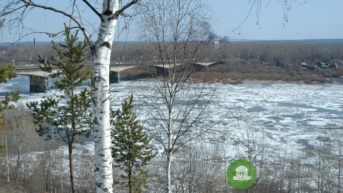 86% рек и озер Кировской области считаются загрязненными