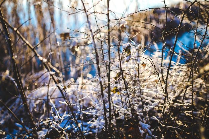 В Кирове похолодает