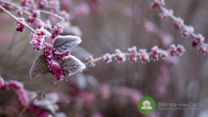 В Кировскую область придут морозы до -37 градусов