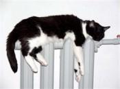Отопление в квартирах кировчан начнут включать с 1 октября