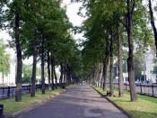 В Октябрьском районе города Кирова начали строительство нового сквера