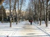 Морозы в Кирове постепенно ослабевают