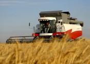 На упорядочение бесхозных земель область направит 6 миллионов рублей