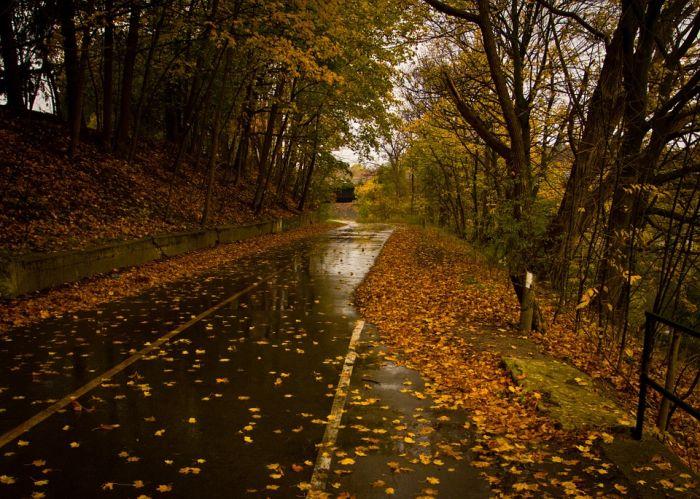 Погода 17 октября