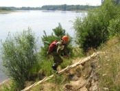 В области выбрали лучшего лесничего – 2012