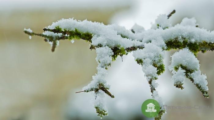 Погода 19 января