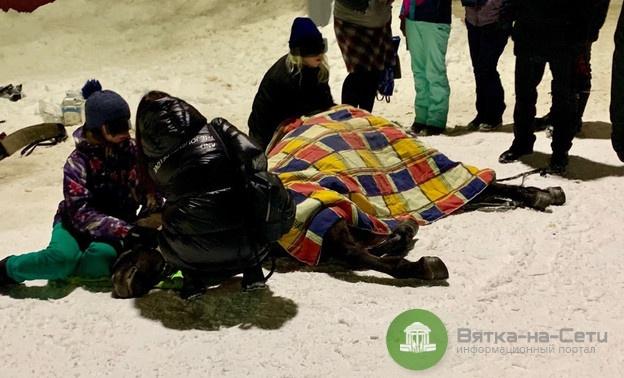 В Кирове на Театральной площади пострадала лошадь