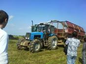 Хозяйства области: заготовка кормов ведётся на прежнем уровне