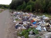 До конца июня в Кирове ликвидируют все несанкционированные свалки