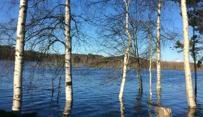 В Кировской области устраняют первые последствия половодья