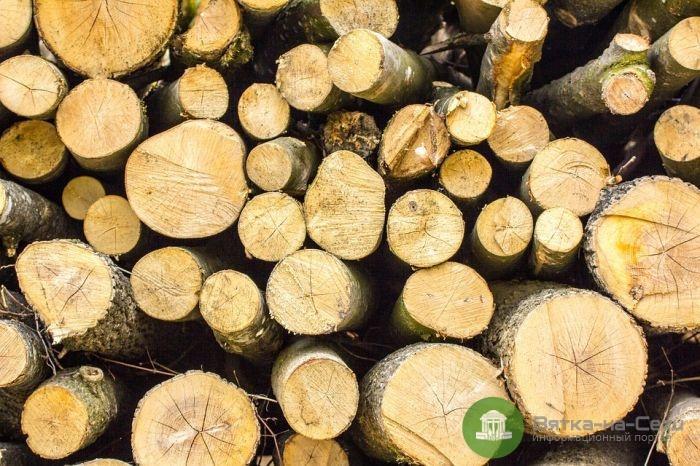 Лес принес в казну Кировской области почти 1,5 млрд рублей