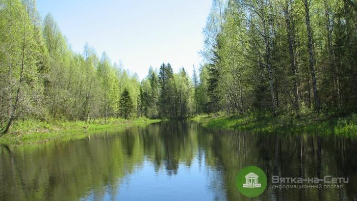 В Кировской области создадут национальный парк «Вятка»