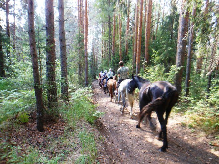 Природный парк «Серебряное копытце» открывает сезон конно-водных туров