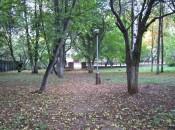 В сквере у Алых парусов незаконно вырубают деревья