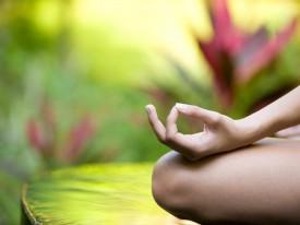 Хатха йога практика онлайн