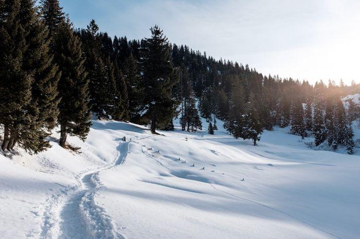 Погода вБашкирии на3января: снежные заносы исильный ветер