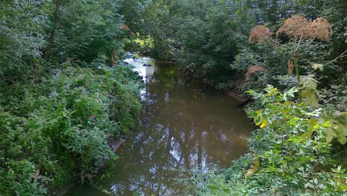 Русло реки Хлыновки планируют расчистить в 2020 году