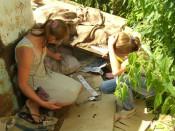 Омутнинские сотрудники ЖКХ «Благоустройство» не пожалели ни собак ни детей