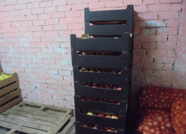 В Кирове уничтожено более 200 кг польских яблок