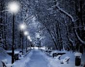В лунном сиянии снег серебрится