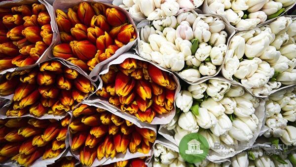 Киров вошел в ТОП-10 городов, где женщины чаще всего делятся в соцсетях фотографиями подаренных цветов