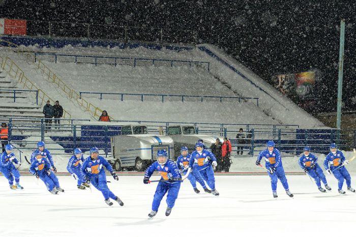 Хоккейному клубу «Родина» оказана финансовая помощь