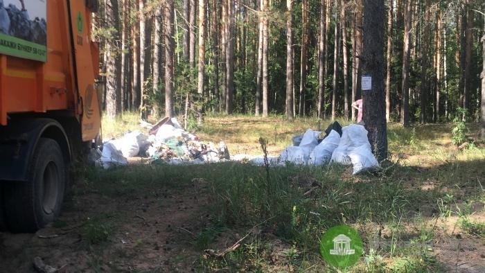 На берегу реки Никульченки ликвидировали стихийную свалку мусора