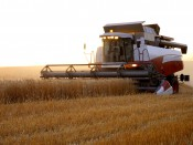 На развитие кировского агропромышленного комплекса в 2013-2015 планируют выделить 20,6 миллиарда рублей