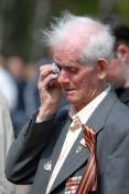 Цыган, едва не убивших ветерана войны, осудили