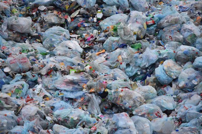 """В Сидоровке пытаются найти решение """"мусорной"""" проблемы"""