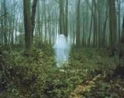 Мистические происшествия с жителями Котельнича на Первом