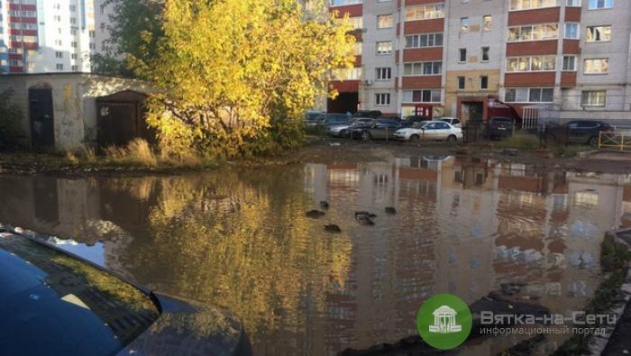В луже во дворе дома на улице Орджоникидзе поселились утки