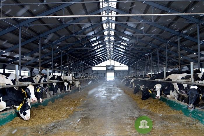 В Оричевском районе появится новый животноводческий комплекс