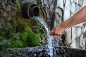 Роспотребнадзор советует не пить воду из кировских родников
