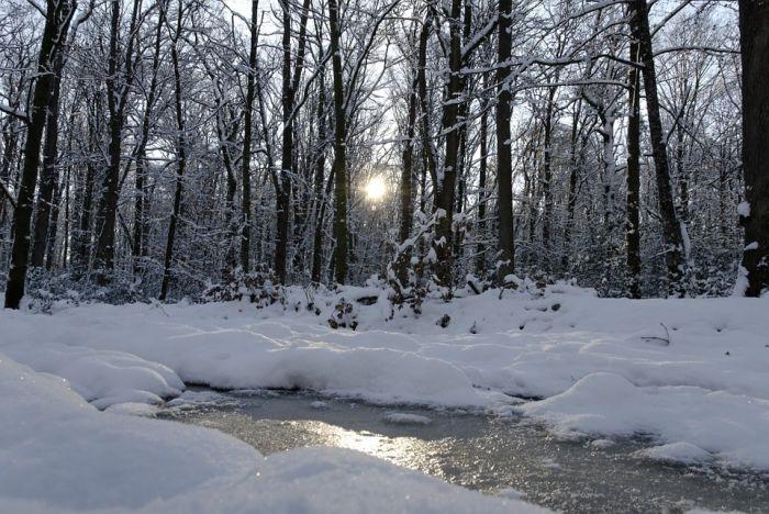 Погода 25 февраля