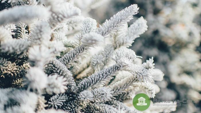 В Кировскую область пришли первые морозы